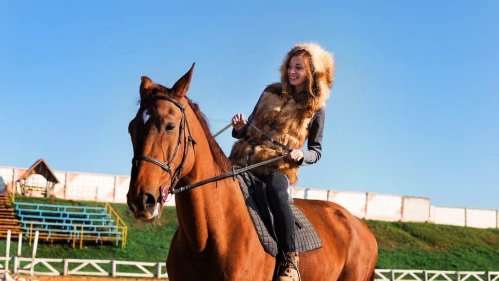 Horseback Riding Lessons Management with kleesto